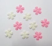 CLF1608 小櫻花