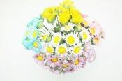 花朵 F09  小雛菊